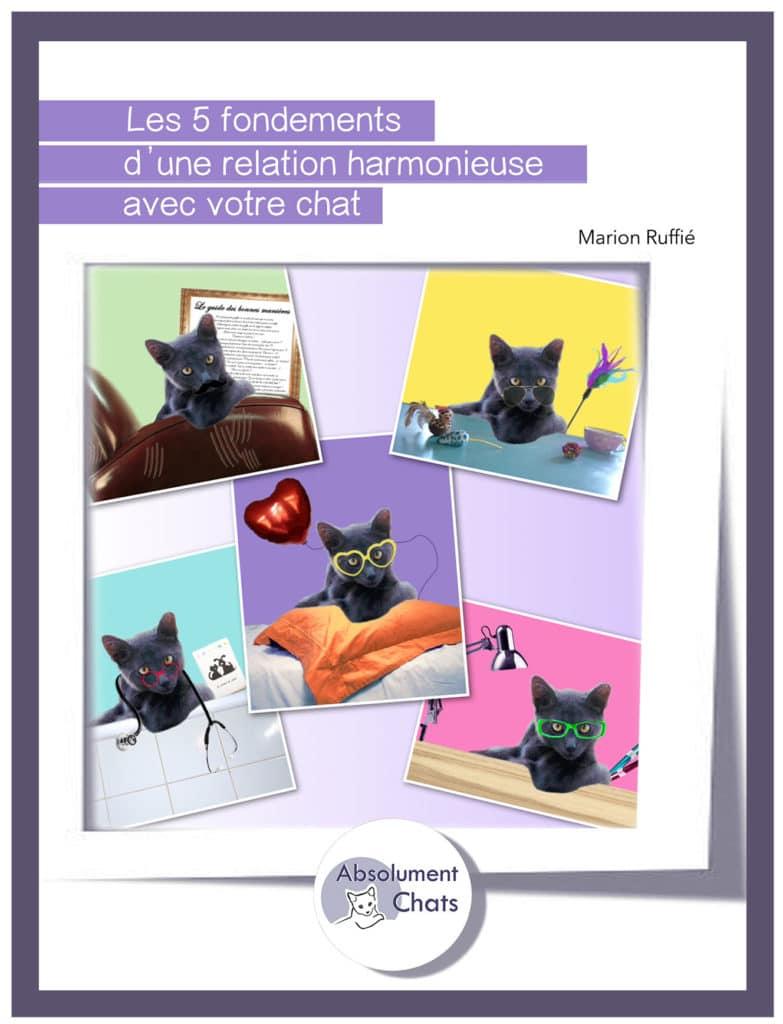 Les 5 fondements d'une relation harmonieuse avec votre chat. Ebook Marion Ruffié. Absolument Chats