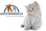archanimaux- partenaire Absolument chats