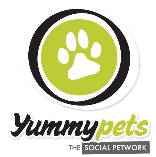 Yummypets - Absolument Chats