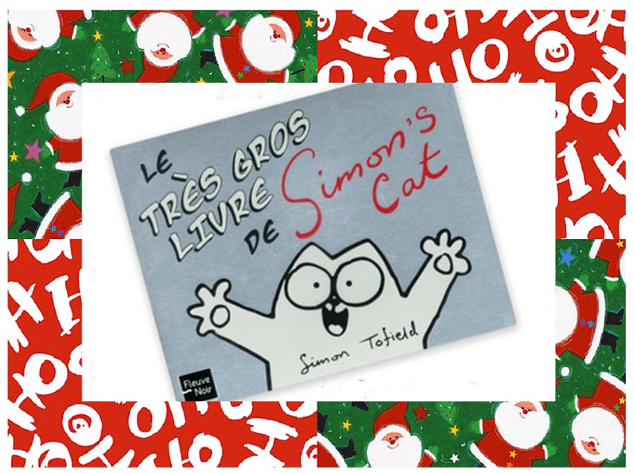 idées cadeaux noel-livre simons cat 2