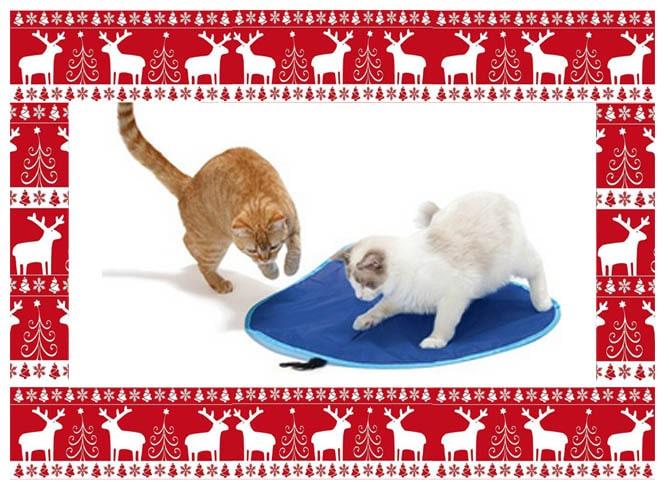 idées cadeaux noel-tapis de jeu pour chat