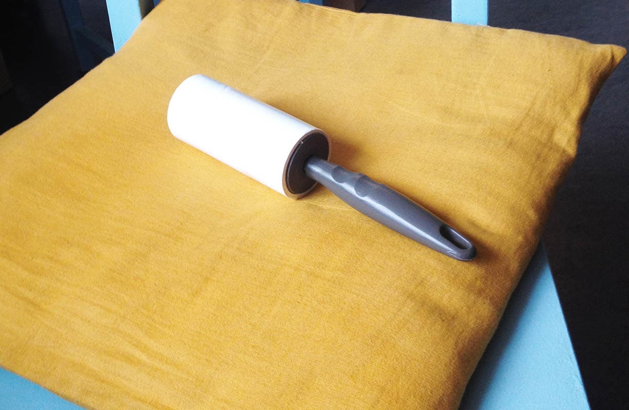 des astuces anti poils de chats absolument chats. Black Bedroom Furniture Sets. Home Design Ideas