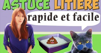 mon astuce litiere facile_ Absolument Chats