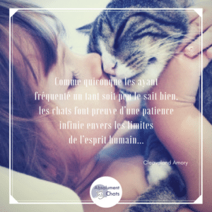 citation-chat-absolument-chats8