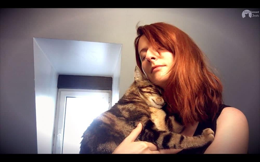 Le chat le plus mignon compilation de c lins - Mon chat me colle plus que d habitude ...