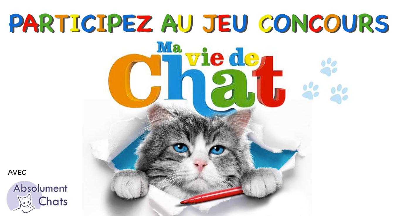 jeu-concours-Ma-vie-de-chat_ Absolument Chats