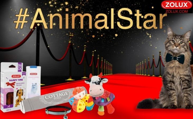 animal-star-vgm