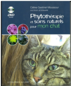 phytotherapie-et-soin-naturels