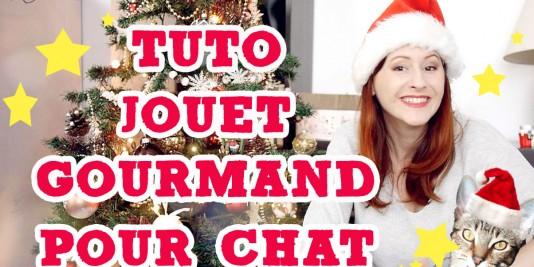 tuto-jouet-friandise-pour-chat-special-noel