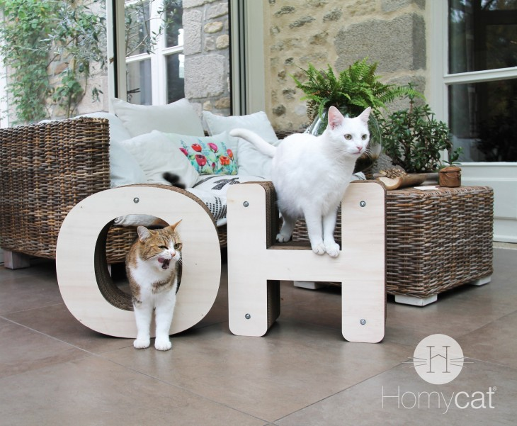 homycat-oh-choup-blanco
