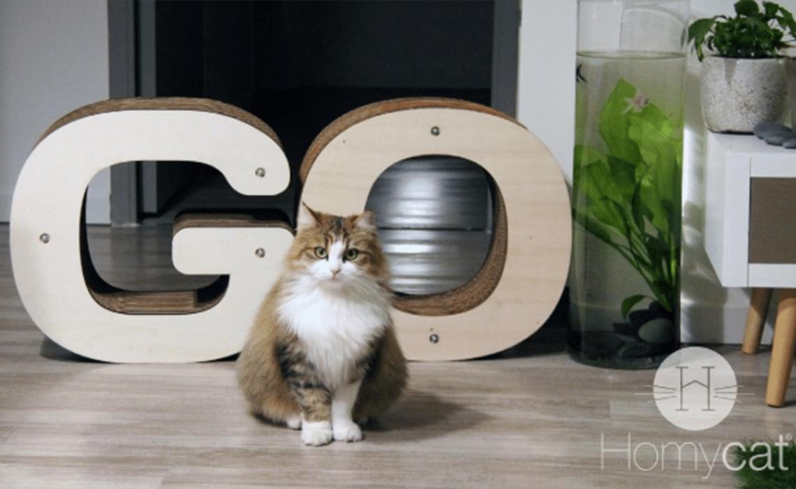 griffoir Homycat