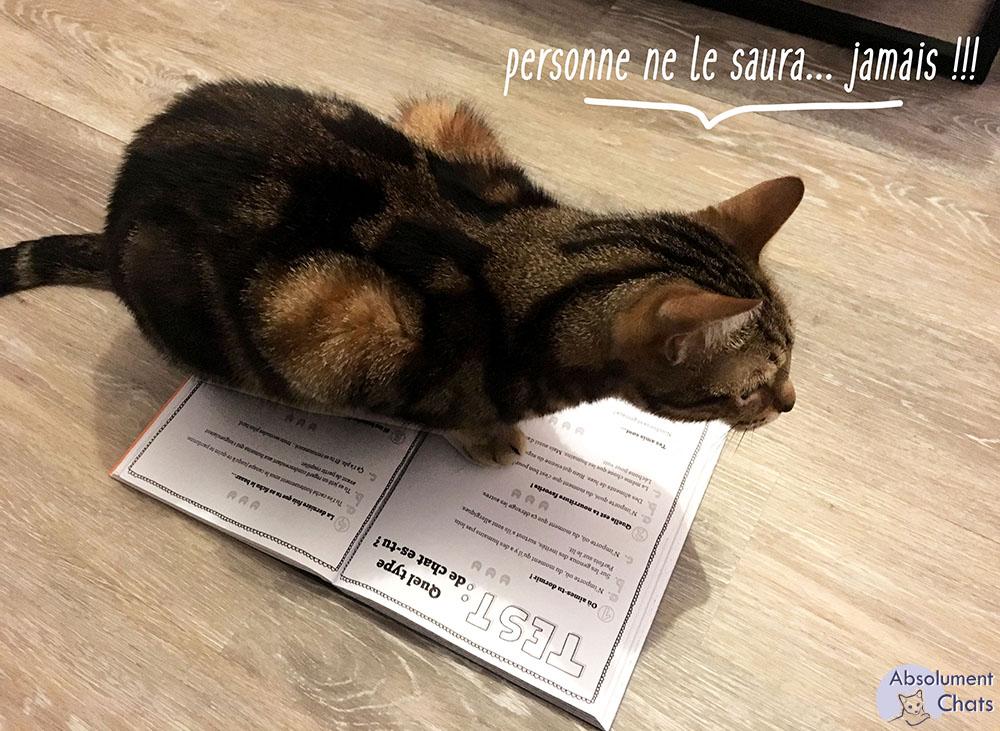 Catsass_ Claude Combacau_ test quel type de chat es tu