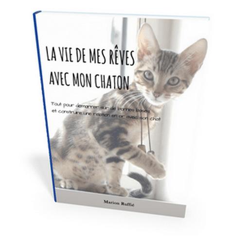 couverture-guide-pratique-vivre-une-vie-de-reves-avec-mon-chaton-ebook-lq