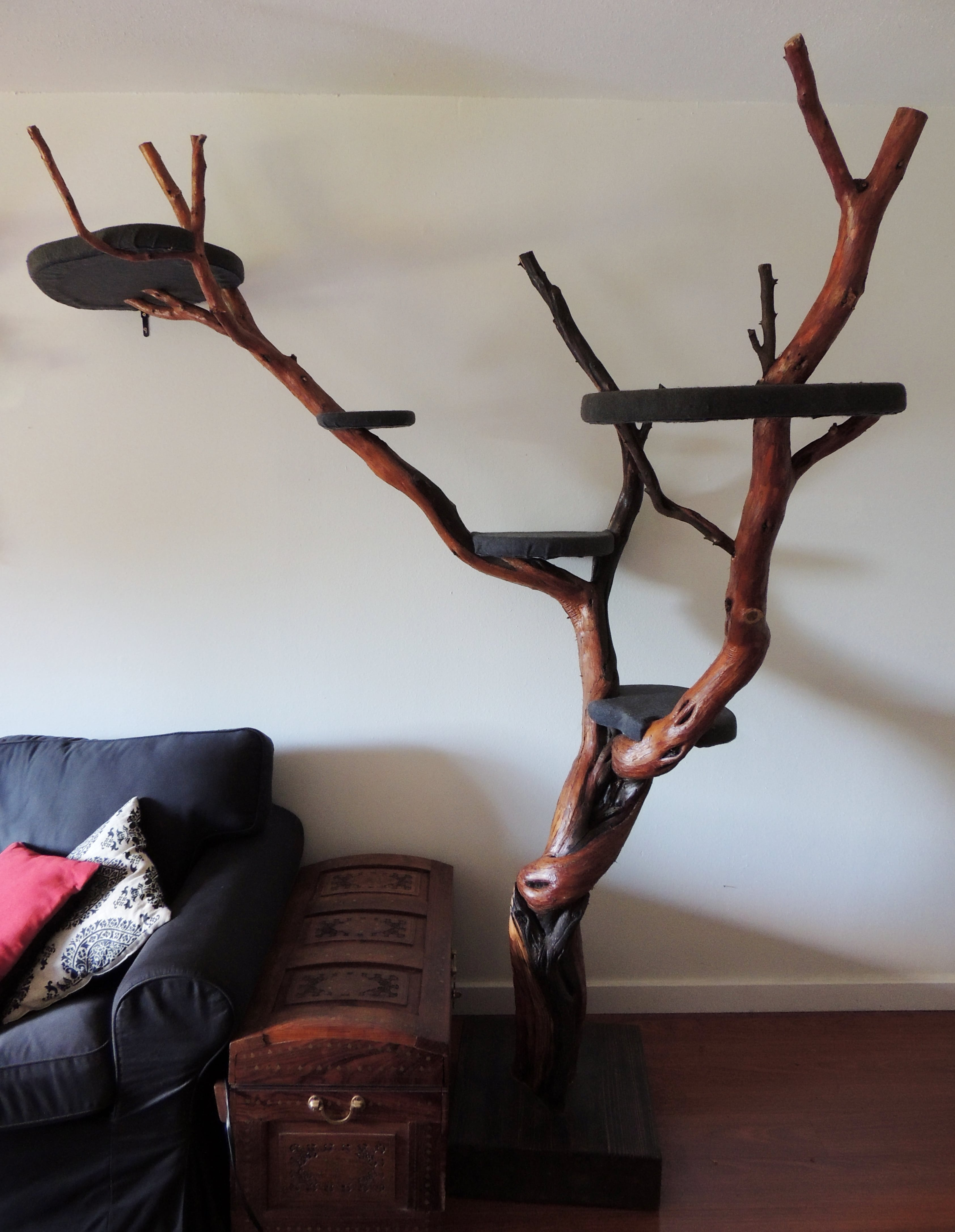 des arbres chats pas comme les autres absolument chats. Black Bedroom Furniture Sets. Home Design Ideas