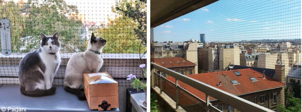 prot ger fen tre balcon terrasse pour que mon chat ne tombe pas absolument chats. Black Bedroom Furniture Sets. Home Design Ideas