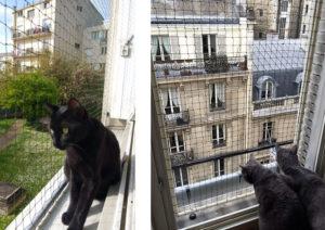 prot ger fen tre balcon terrasse pour que mon chat ne. Black Bedroom Furniture Sets. Home Design Ideas